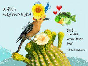 What happens when Fish Loves Bird?
