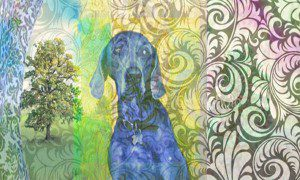 """Dog Sitting, Contemplating the Moment"" by Janice Taylor, Weight Loss Coach, Author, Artist, Positarian"