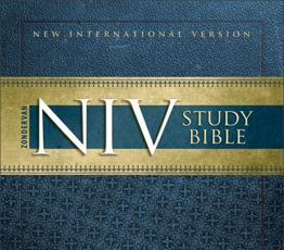 NIVSBNU_Cover.jpg