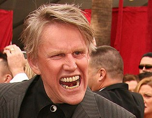 Who's watching Celeb Big Brother? Gary-busey