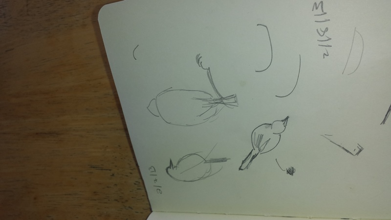 2013 bird sketches