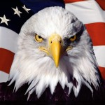 Be a true American Patriot.  Stand up for America.