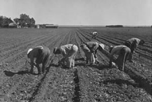 Migrant workers using El Cortito
