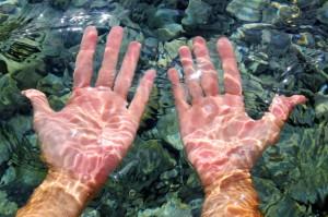Las manos arrugadas por estar mucho tiempo en el agua está relacionado con nuestro sistema nervioso