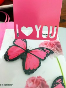 I love You Pink Butterflies Melanie Lutz