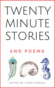 20 MINUTE STORIES with Mel Lutz COVER_KINDLE