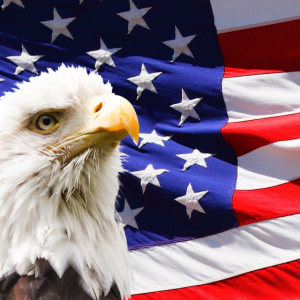 Fly Eagle Fly America
