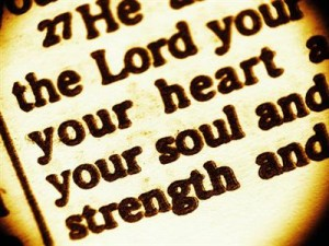 joel osteen, daily bible reading, words of encouragement,