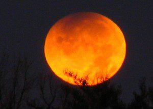 beliefnet lunar eclipse forecast astrology matthew currie