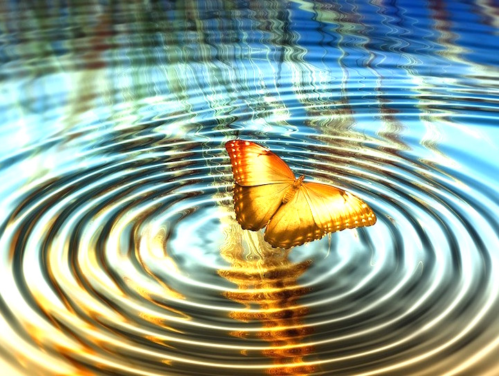 butterfly effect by david starlyte