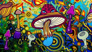 psychedelics treating depression | Terezia Farkas | depression help | Beliefnet