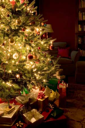 christmas spirit.jpg