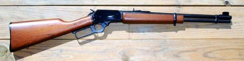 gun smaller.jpeg