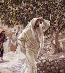 Jesus walking 1 INSIDE.jpg