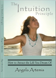 Intuition-Principle-cover-small-version-for-PbI1