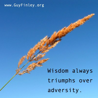 Wisdom always triumphs over adversity. - Guy Finley