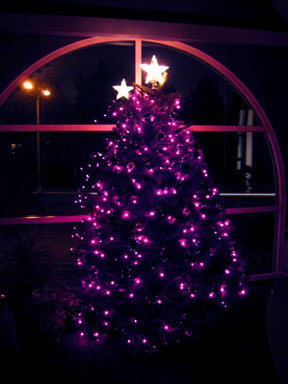 Advent-tree-inside-5.jpg