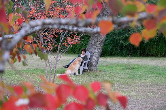linda-sandy-fall-8.jpg
