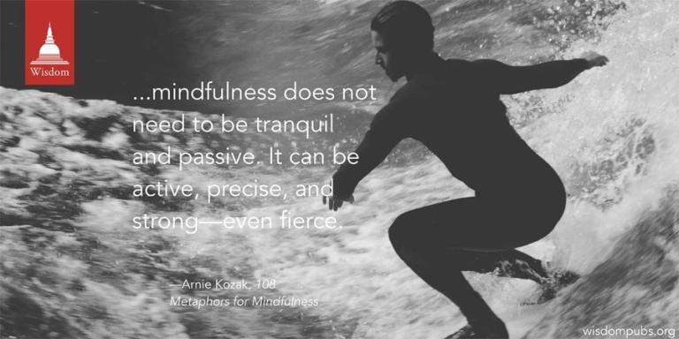 wisdom_surfing
