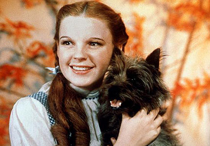 dorothy and toto.jpg